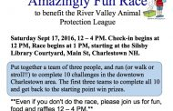 Amazingly Fun Race